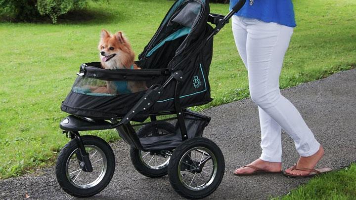 Buying the Best Pet Stroller
