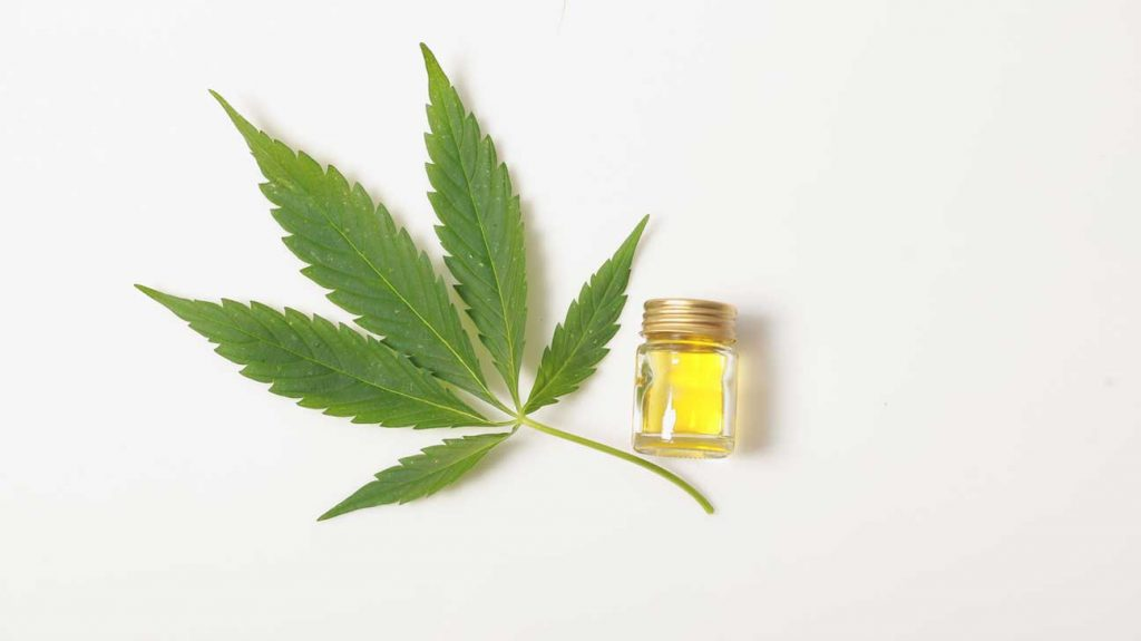 Why do you need to try CBD with your pets?